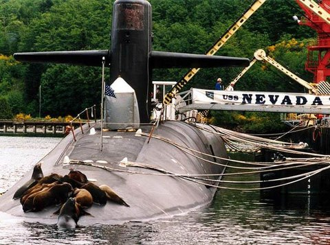 SEAL Team Takes Over US Navy Ballistic Missile Submarine  A team of SEALs recently took over USS 'NEVADA' (SSBN 733)  a TRIDENT missile submarine, while she was tied up to the pier  at the Trident Submarine Base, Bangor, Washington.