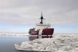 The U.S. icebreaker Polar Star is seen in the Arctic in July 2013.