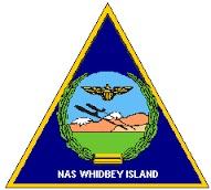 NASWI logo